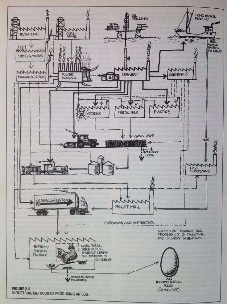 Permaculture Design Examples Google Search: 1000+ Ideas About Permaculture Design On Pinterest