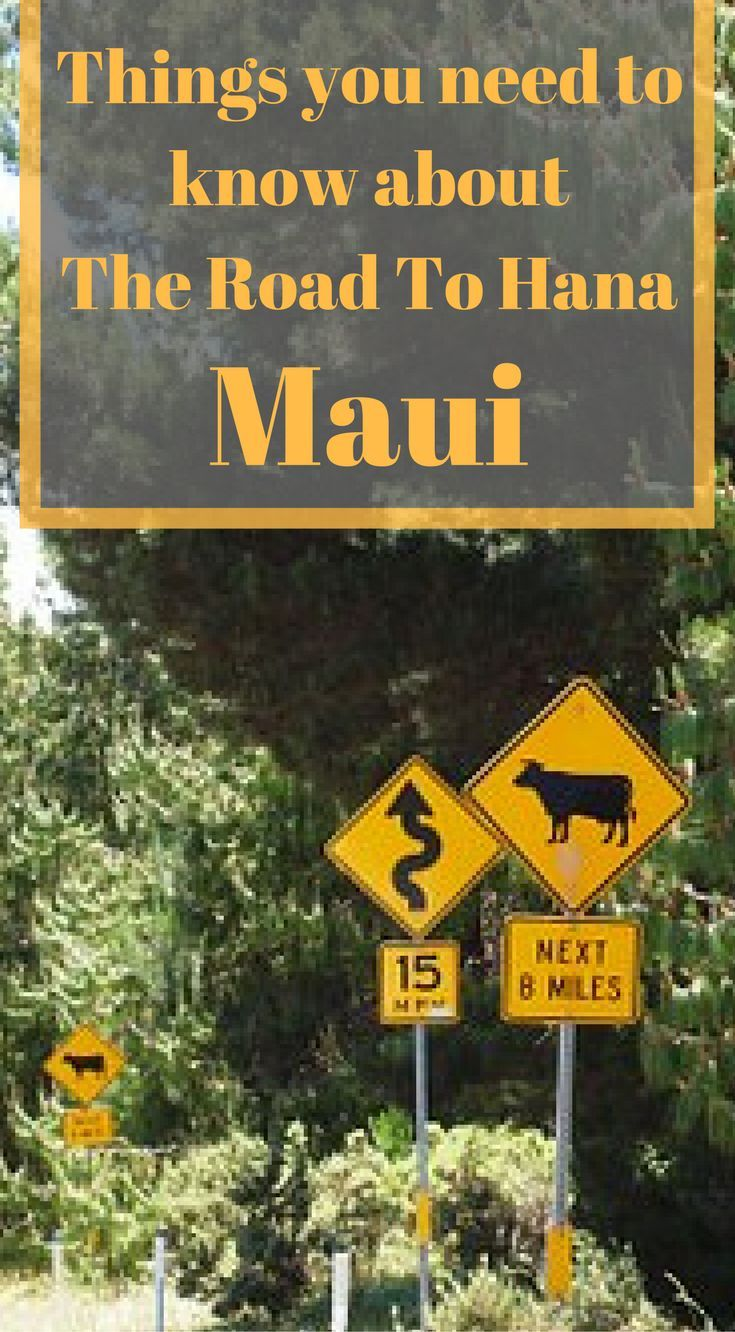 Best 25 Road To Hana Ideas On Pinterest Winding Road