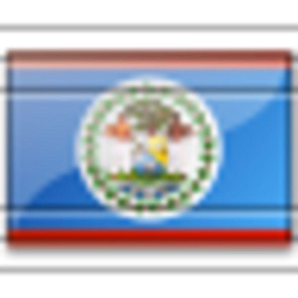 Flag Belize 5