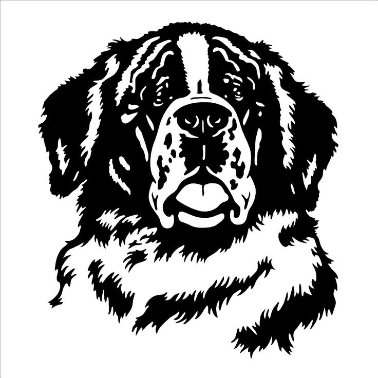 Details about ST BERNARD DOG HEAD FACE vinyl wall art decal sticker  SILHOUETTE CAMEO  St