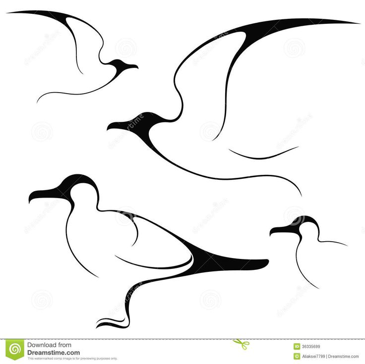 seagull-isolated-objects-white-background-vector-illustration-eps-36335699.jpg (1300×1299)