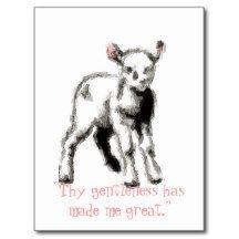 Gentleness Postcards