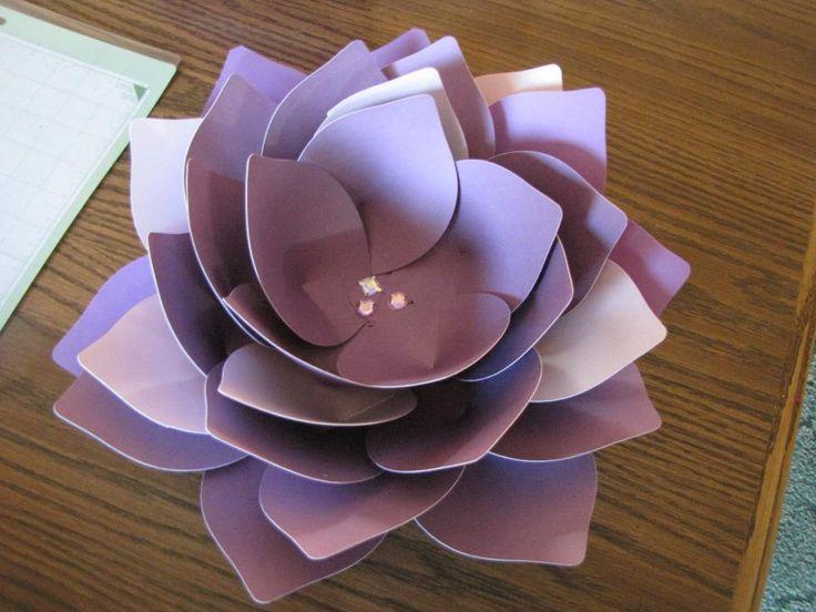 Cricut Expression- Giant Flowers Cartridge-Lotus