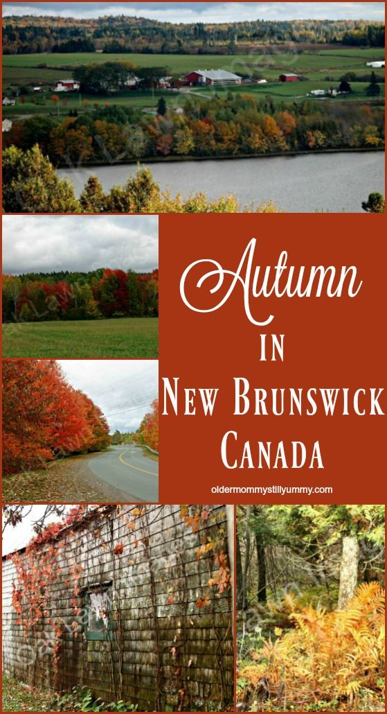 This is just one of many images depicting autumn in beautiful southern New Brunswick, Canada!