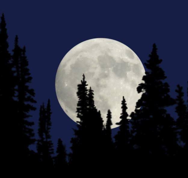 In Kürze wird es viele Posts mit Mondbildern geben. Woher ich das weiss? ;-)