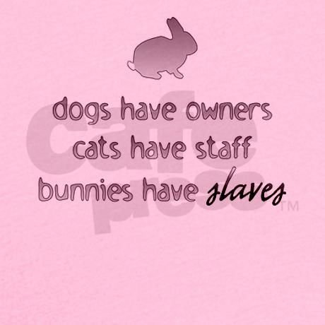 "Bunnies Have Slaves. True story! Since I have all three, I should have this as a sign in my house. Maybe add a line like ""Birds have attendants."""