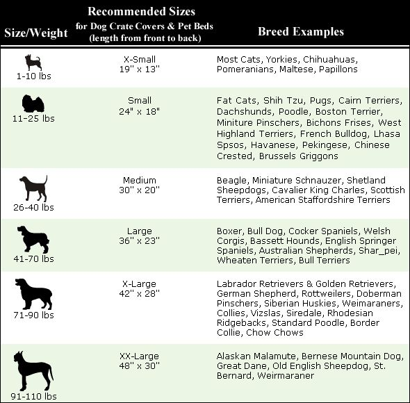 Dog Travel Crate Size Chart