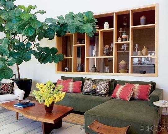 : Living Rooms, Elle Decor, Fiddleleaf, House, Indoor Trees, Leaves, Figs Trees, Indoor Plants, Fiddle Leaf Figs