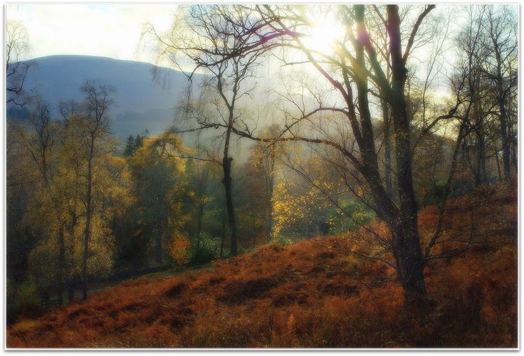 Glen Lyon (late Autumn) by eric niven on 500px