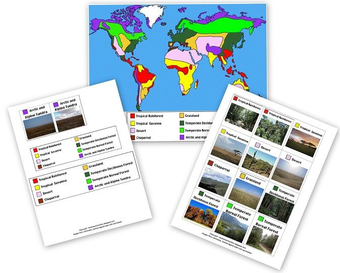 World Biomes Pin Map Free Printable C2 Wk 1