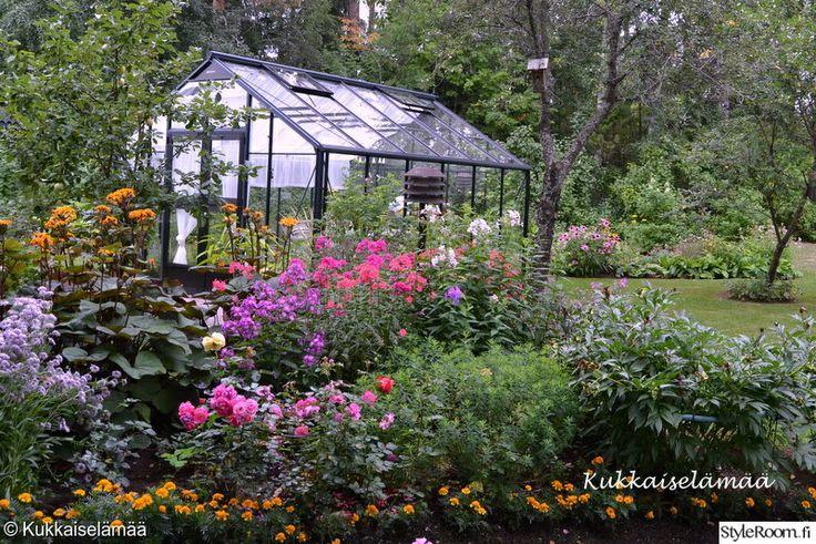 kasvihuone,piha,istutukset,puutarha