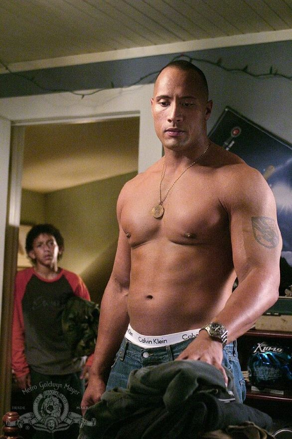 dwayne johnson lyssaaustin