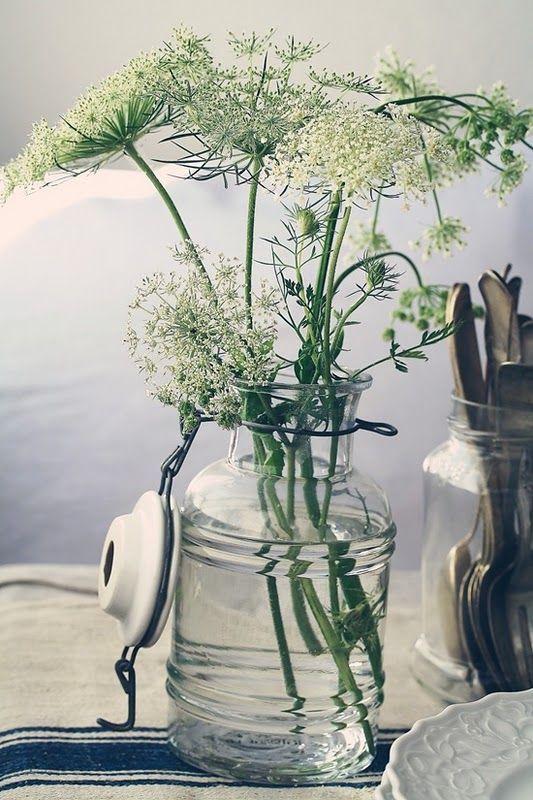Dill als leichte zarten Blumendekoration