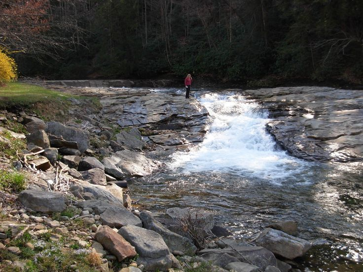 48 best wv oh md and pa trout streams images on for Trout fishing in wv