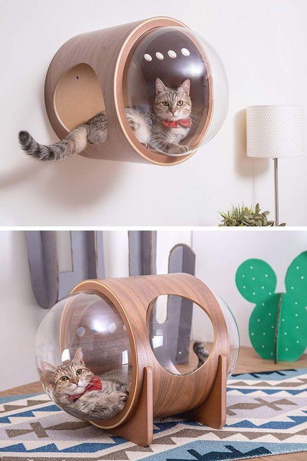 Von den Raumschiffen inspirierte Katzenbetten sind ein Stellar Spot zum Schlummern