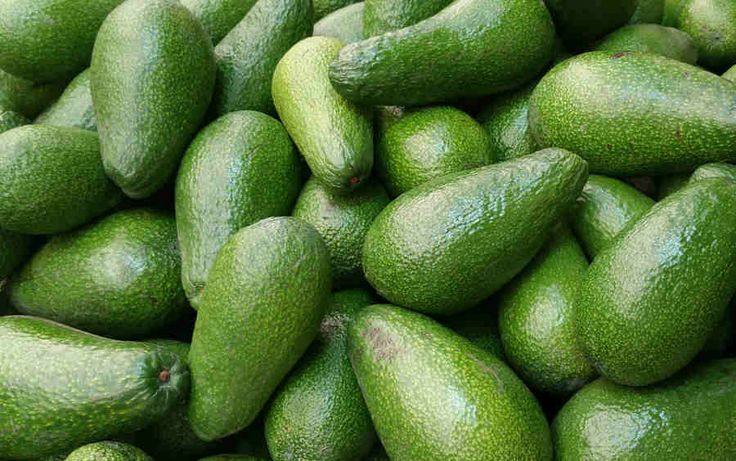 Avocados can be expensive in comparison to other fruits and vegetables
