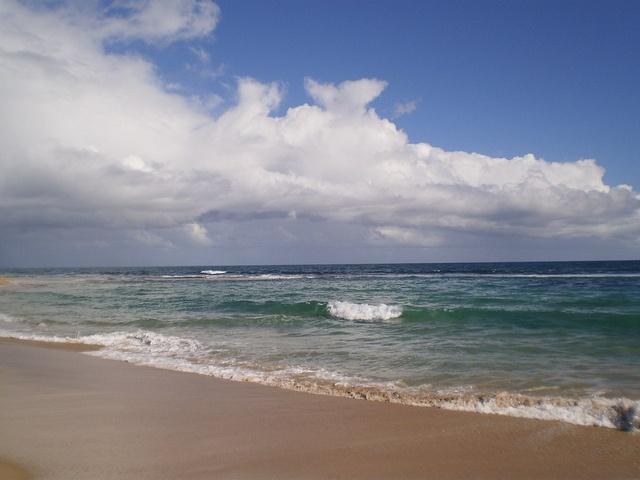 Tim's Thicket Beach