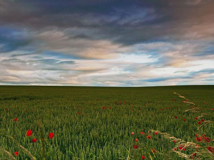 Scottish Coast Village National Geographic | Scotland Picture - Nature Wallpaper - National Geographic Photo of the ...