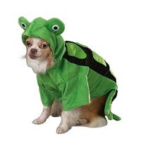 Turtle Dog Halloween Costume  Price €18.99 [£16.52]