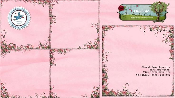 Floral Overlays - Pink and Green