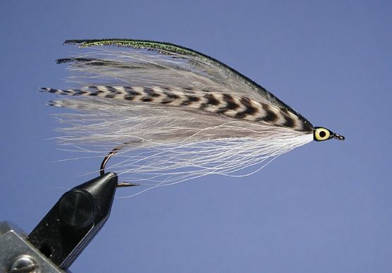 "Dick Stewart and Bob Leeman's book ""Trolling Flies for Trout and Salmon"" has inspired fly tyers for the 24 years since it's publication in 1982. Here, finally, we get to see some of the patterns listed in the back of the book that did not have supporting photographs."