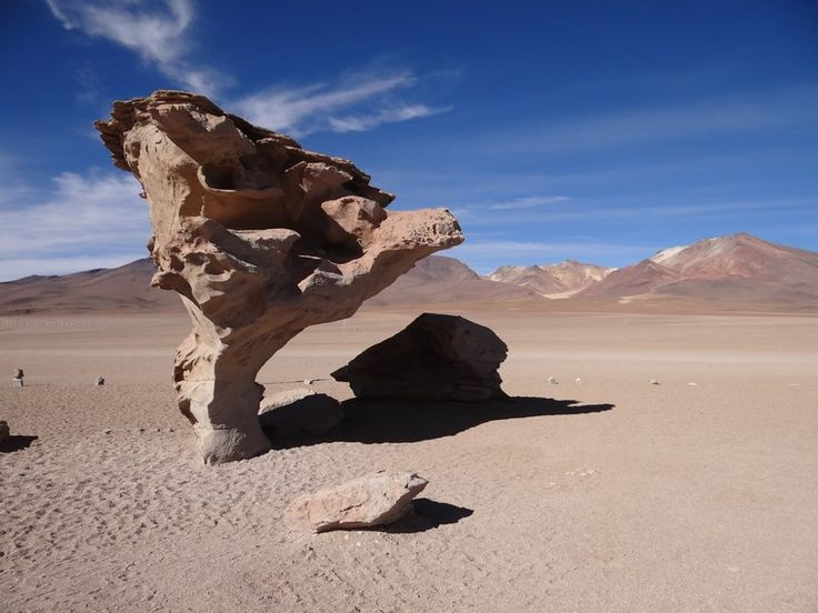 The stone tree, a curious stone in the desert of Bolivian Altiplano. Read more: http://www.imperatortravel.ro/2016/03/bolivia-patru-zile-prin-pustietatile-din-altiplano-ep-2-antrenamentul-pentru-salar.html