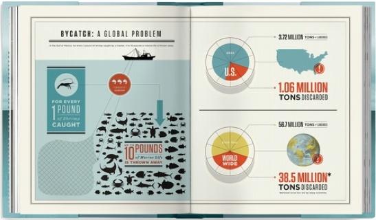 Annual Report / Graph