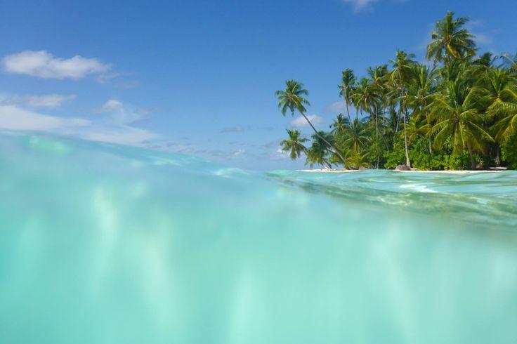 Filitheyo Island, Maldives, paradise on earth, travel, vacation, beautiful place, wanderlust, tropic, palm tree