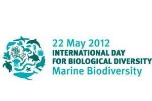 Il 22 maggio si celebra la Giornata mondiale della biodiversità (International Day for Biological Diversity), dedicata alla difesa e alla tutela della biodiversità e proclamata per la prima volta nel 2000 dall'Assemblea generale delle Nazioni Unite.