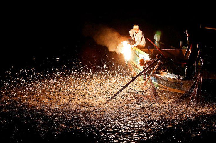 Огненная ловля / Фото дня / Моя Планета