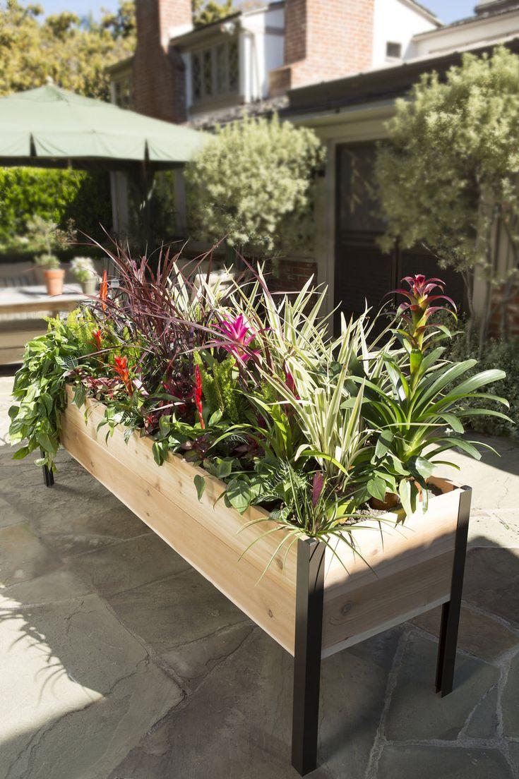 Planter Boxes: Standing Height Cedar Raised Garden | Gardener's Supply