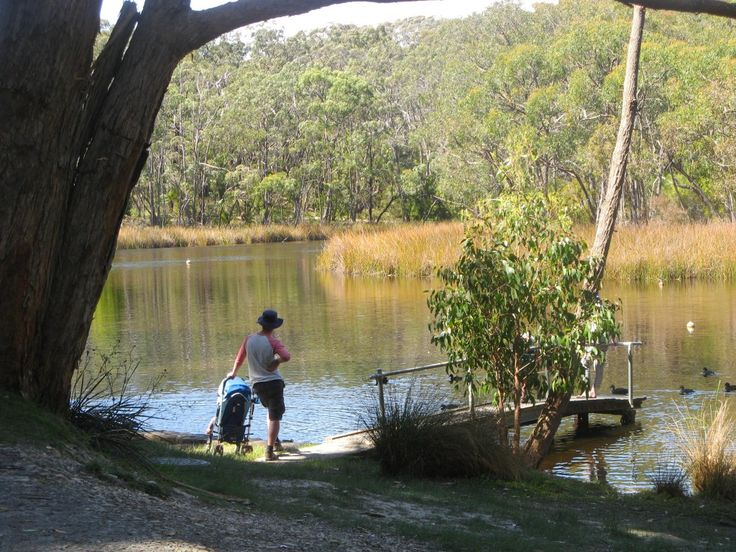 Walks to do with kids in SA