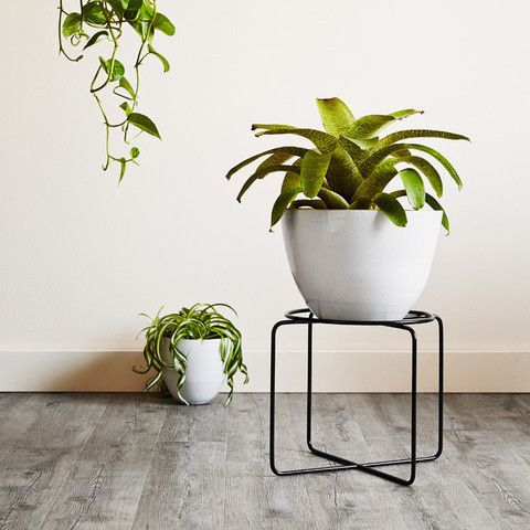 Beautiful, functional plant stands that allow you to get creative with your greenery.Designed and made in Melbourne.
