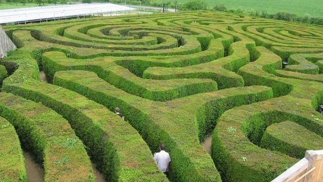 Mejores 92 im genes de jardines geometr a arte y for Jardin geometrico