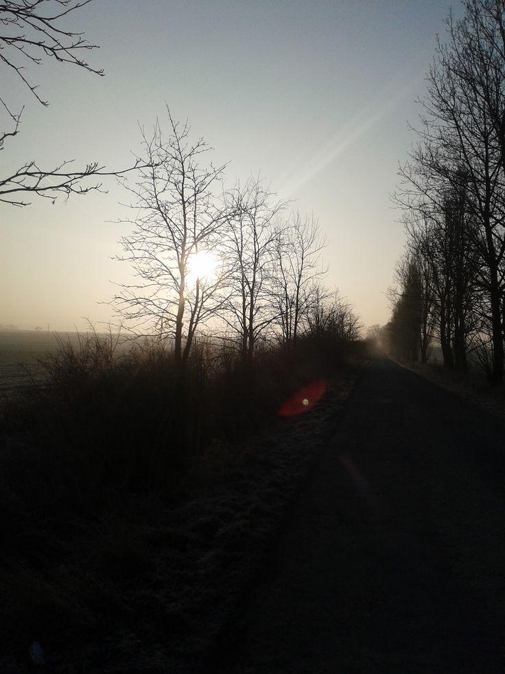 Frozen winter morning in Pilsen Region, Czech Republic.