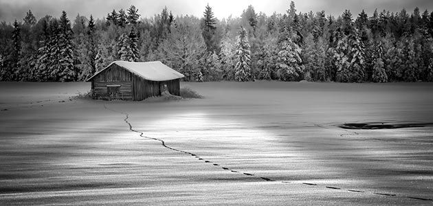 Free short guide to black and white photography