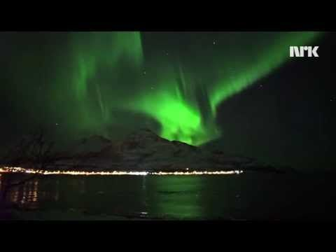 This stunning video captures a breathtaking scene - a pod of whales frolicking and playing in their shimmering, green luminescence.