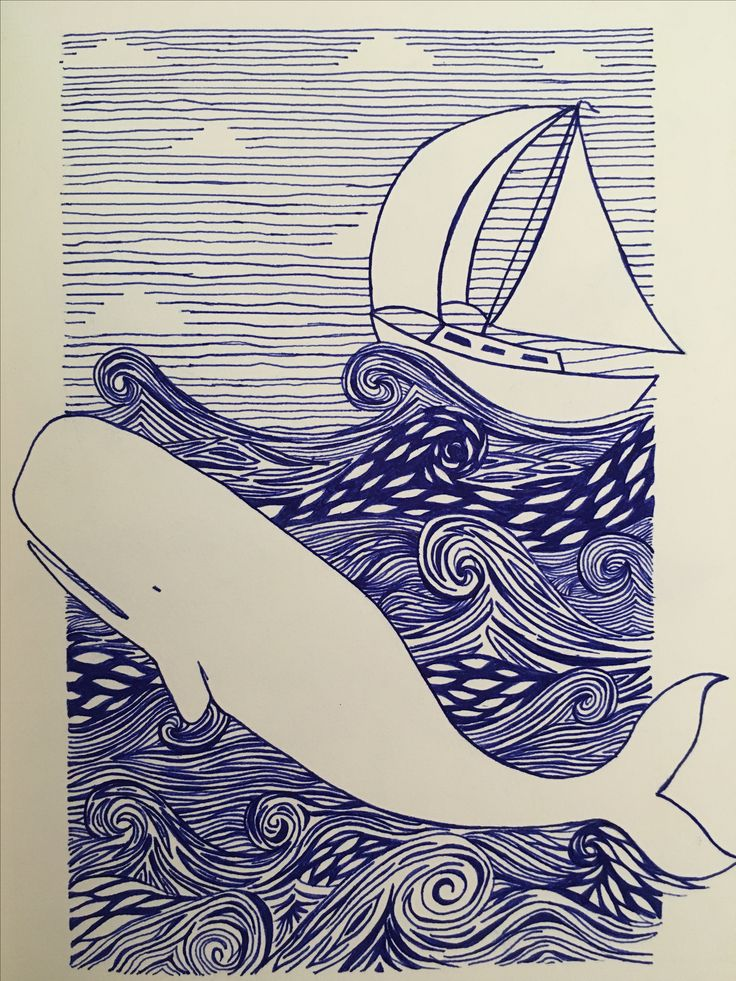 Blue in whale and boat 20.11.16