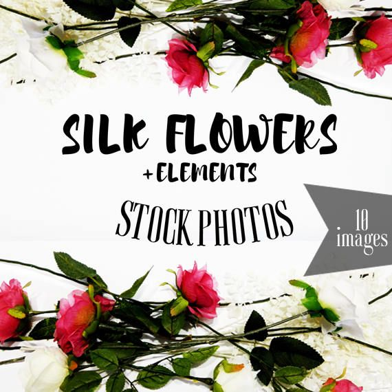 Silk Flowers & Elements  Stock Images, Floral Images, Stock Photography, Floral Stock Photography, Roses, Pink and White Roses, Social Media Images, Website Images