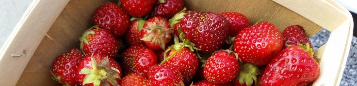 Jam On! Fresh Strawberry Rhubarb Jam (no gelatin, no pectin, no sweat!) | Hot, Cheap & Easy
