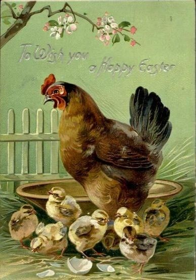 25 Unique Vintage Chicken Art Ideas On Pinterest