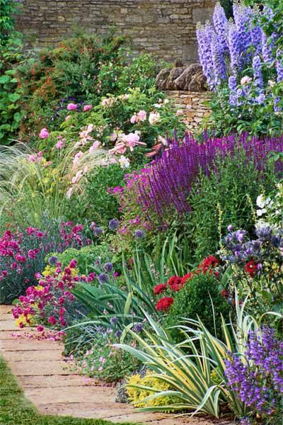 beautiful mix of perennial flowers bloom in a wide range of blue, white, yellow, red, and purple colors against a brown, stone, wall