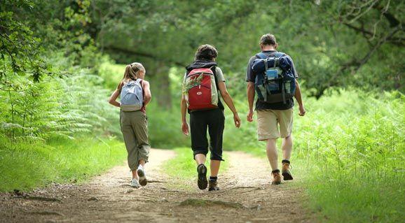 Venez découvrir nos boucles de randonnée balisées de 3 à 40km, il y en a pour tout les niveaux ! Entre Forêt et Campagne, en bordure de lac, dans les chemins creux, sur les voies romaines ou le chemin de halage, laissez-vous guider... Des topofiches rando sont en vente dans nos offices de tourisme et disponibles sur notre site internet: www.tourisme-pontivycommunaute.com