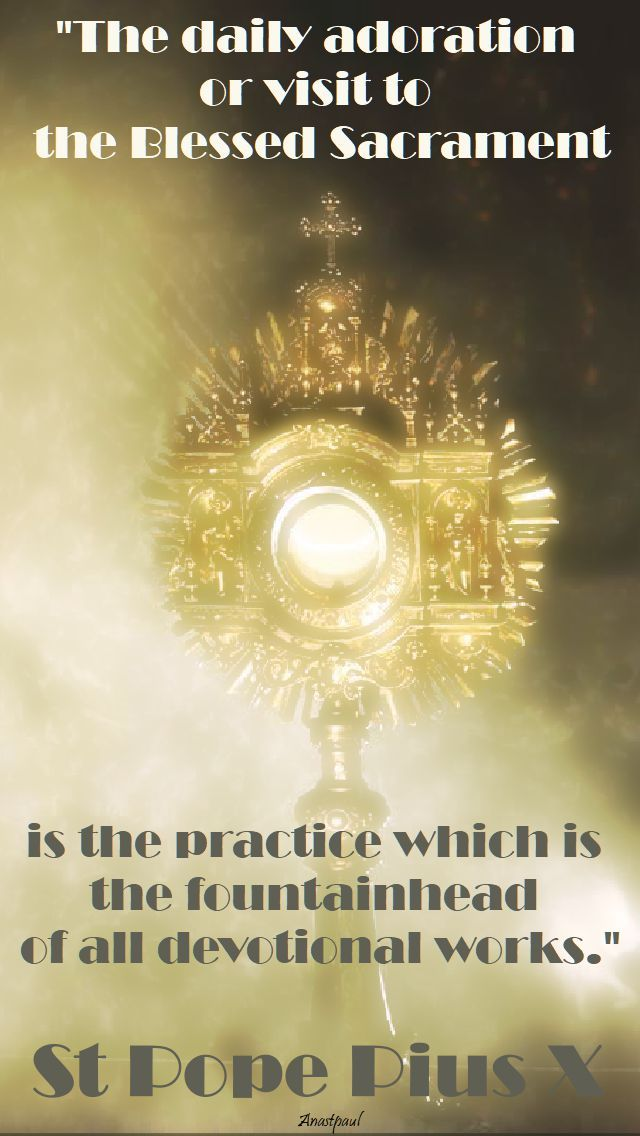 """Quote/s of the Day – 21 August – The Memorial of St Pope Pius X  """"The daily adoration or visit to the Blessed Sacrament is the practice which is the fountainhead  of all devotional works.""""....#mypic"""