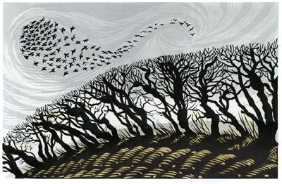 This reminds me so much of walks around the East Devon fields when I was growing up and the slightly mystical aura caused by the early evening colours in the sky and the shadows they made. Niki Bowers - Winter Starlings