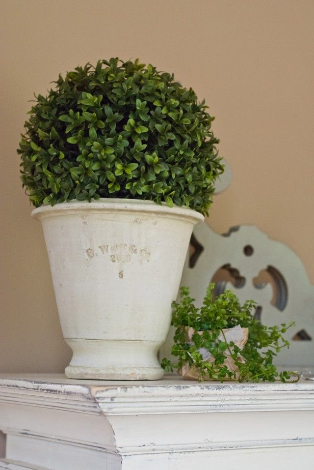 Farmhouse style topiary with a faux boxwood and gorgeous pots! Great finds!