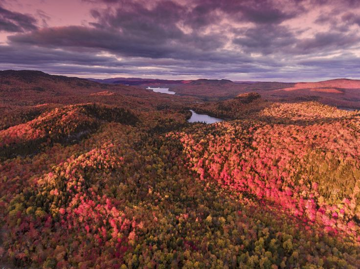 Check out this amazing photo on SkyPixel: Automne Canada.jpg