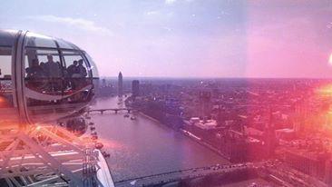 #LondonEye  ('Ojo de Londres'), también conocido como Millennium Wheel ('Noria del milenio'), es una noria-mirador de 135 m situada sobre el extremo occidental de los Jubilee Gardens, en el South Bank del Támesis, distrito londinense de Lambeth, entre los puentes de Westminster y Hungerford. La noria está junto al County Hall y frente a las oficinas del Ministerio de Defensa.
