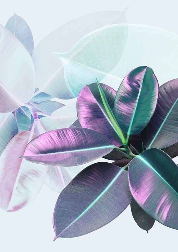 Plants and leaves on your walls! Printable and affordable wall art for modern people by #PrintsProject