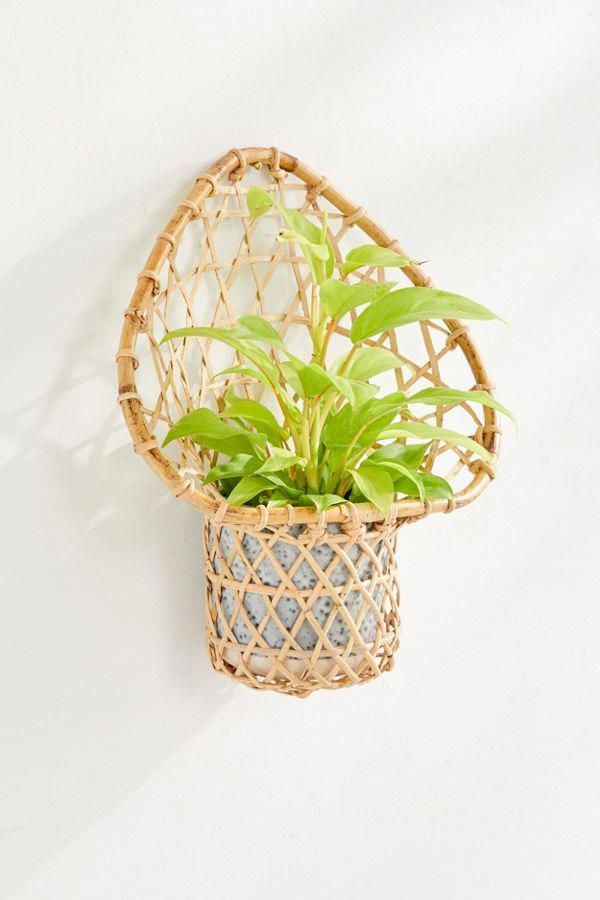 Ryland 6 Planter Wall Basket In 2020 Baskets On Wall Hanging Plants Rattan Planters